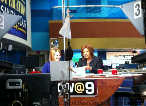 ABC15 Amber Sullins and Susan Casper