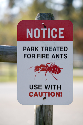 Fire Ant Sign What Are The Top 3 Most Common Pests in Arizona?