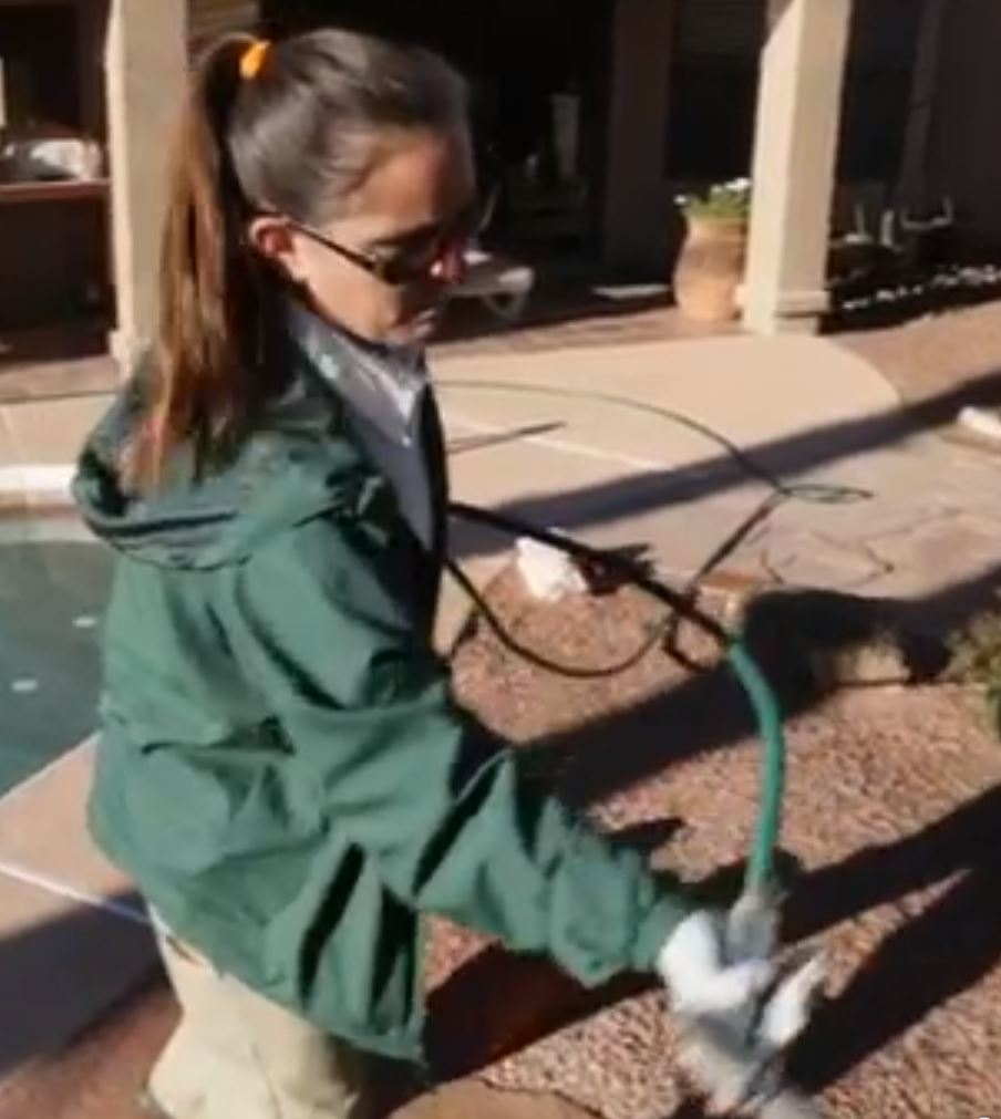 Female Pest Tech Gilbert Exterminator